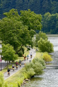 Biking along Germany's Mosel River