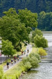 Biking along Germany's Mosel River