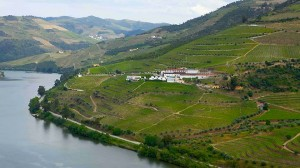 The Douro River between Regua and Pinhao