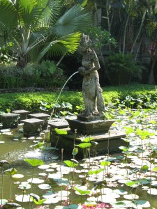 Lotus pond at Puri Lukisan Museum in Ubud