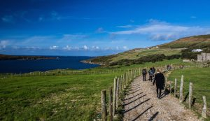 Sacred Earth Journeys in Ireland