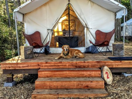 Glamping in the California Wine Country